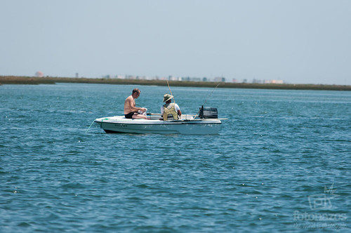 Paseo en barco a Ilha Deserta, la isla más al sur del Algarve Portugués