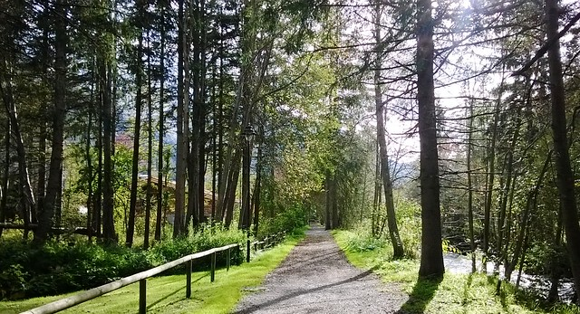 trail from les praz to chamonix