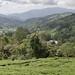 Cameron Highlands panorama 3