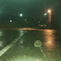 fog(0.0), sunlight(0.0), rain(0.0), snow(0.0), morning(0.0), drizzle(1.0), light(1.0), street light(1.0), reflection(1.0), darkness(1.0), night(1.0),