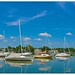 Sailboats at Neenah Harbor by J Henry G