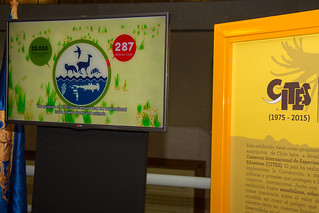40th anniversary of entry into force of CITES in Chile celebrated