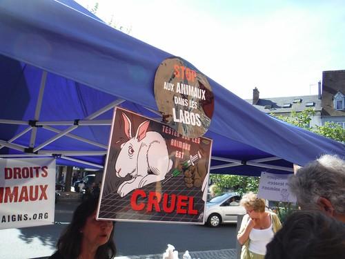 internationalcampaigns a posté une photo:Action Bronzez Sans Cruauté en centre-ville d'Evreux par International Campaigns Normandie avant les premiers départs vers la mer. Avec sensibilisation aux droits des animaux et dégustation vegan.