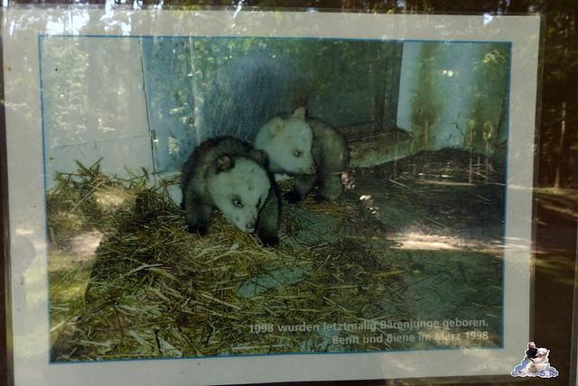 Tierpark Perleberg 09.08.2015 14