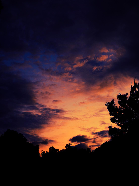 a yoyogi sunset