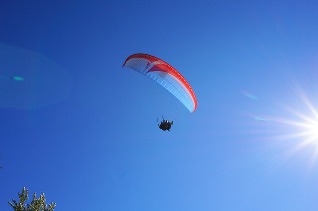 paragliding team overhead