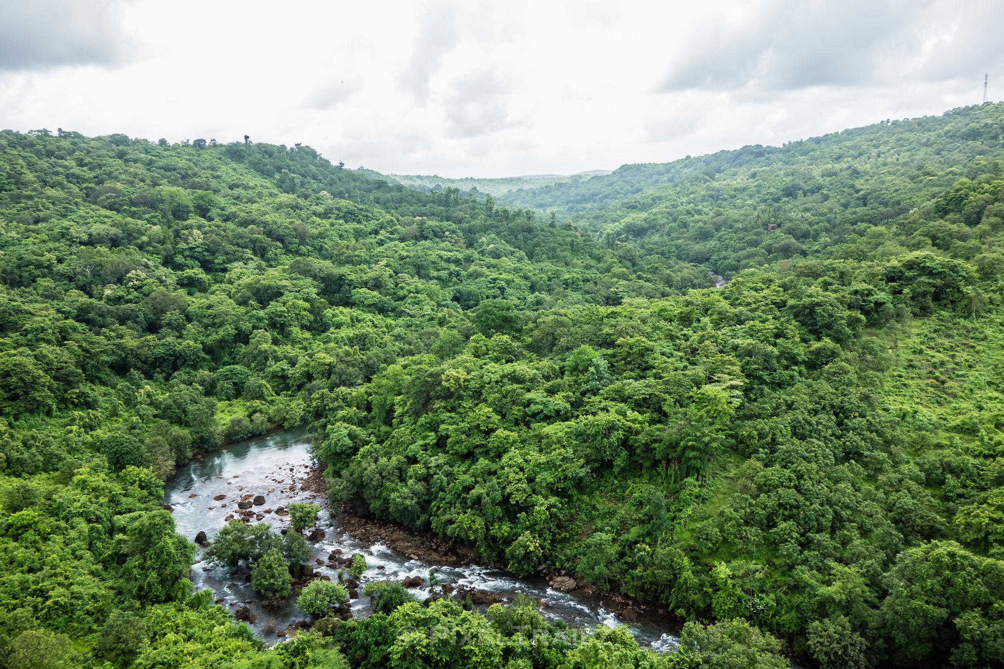 Panvel River