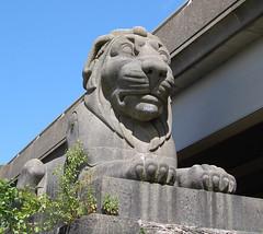 Stephenson's lions