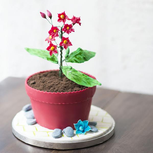 Flower on a Pot Cake by Daivata Barge