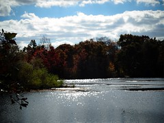 Wantagh - Twin Lakes Preserve - Autumn (69)