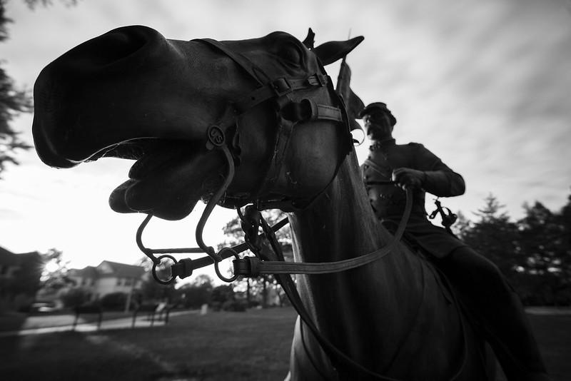 Memorial Horse