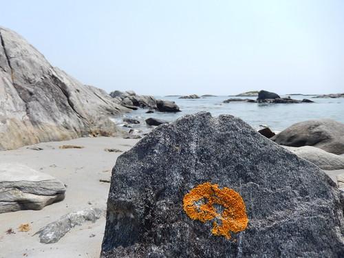 Kejimkujik NP Seaside - 4