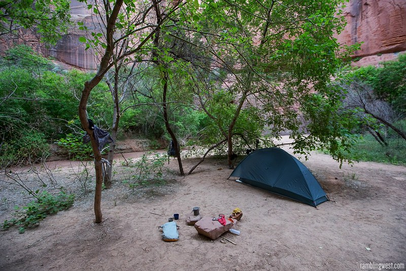 Confluence Camp..., Buckskin Gulch image