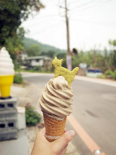 09.夏天還沒開始散步就熱昏了,先來一支鐵觀音冰淇淋