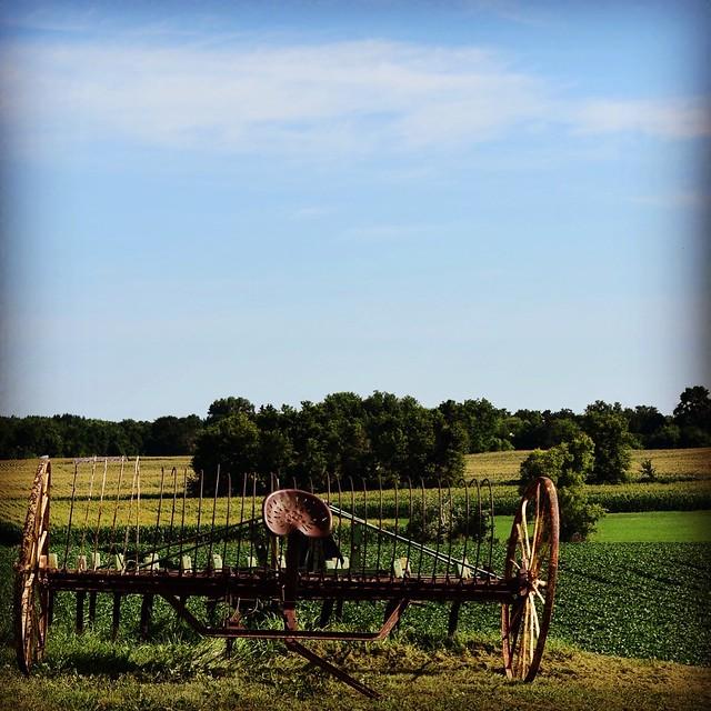 Farm to Table Experience at Sweet Beet Farm