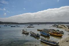 Chilean south