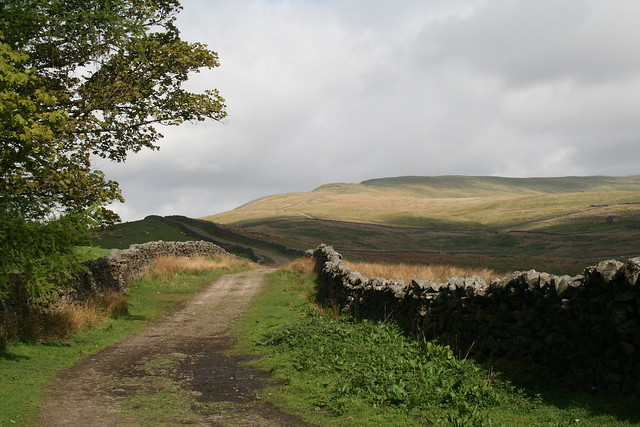 Walled bridleway up Great Shunner Fell
