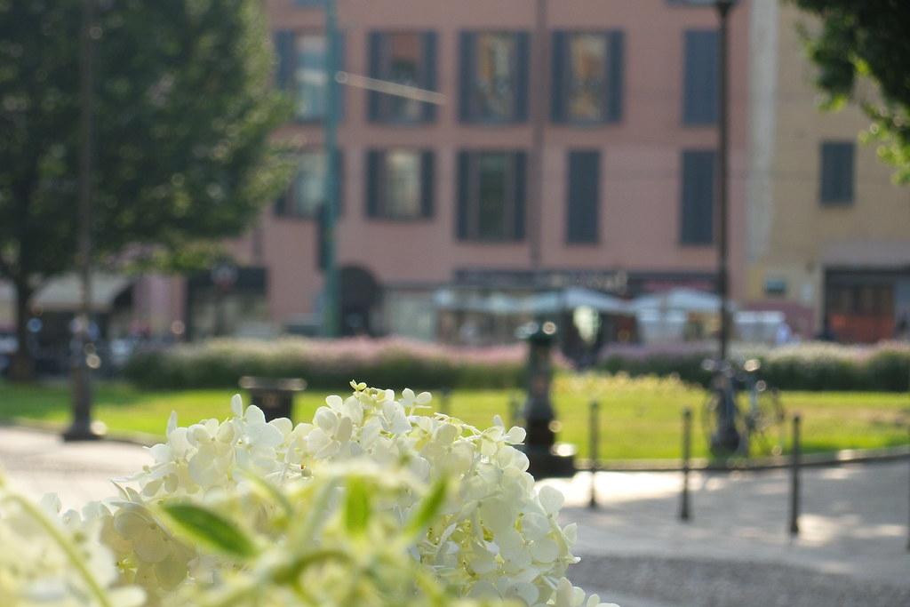Effetto #caldo #sfocato in piazza Sant'Erasmo