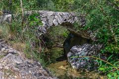 un vieux pont sur le Riou