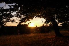 Coucher de soleil #7 - Photo of Clermont-d'Excideuil