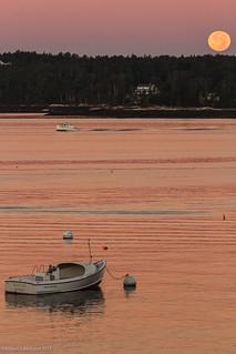 Dusk on Spruce Point