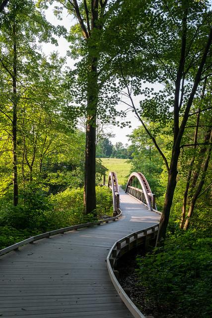 Longwood Meadow Bridge