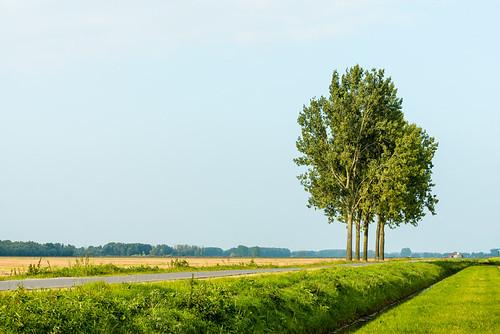 Globale bescherming poldergraslanden na 20 jaar een feit