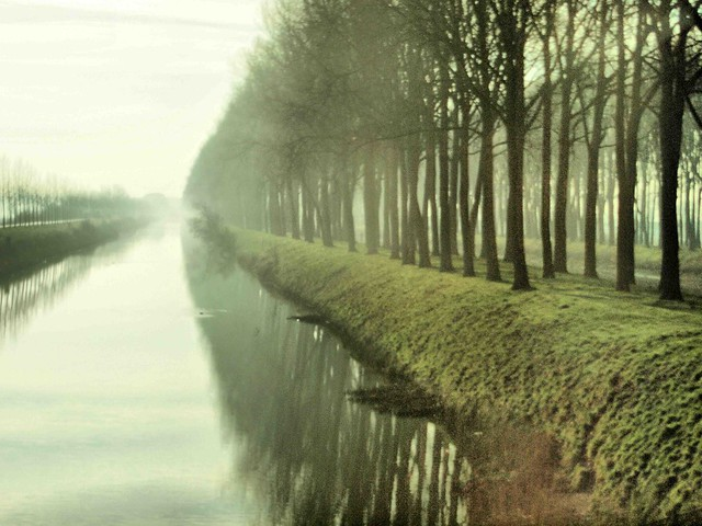 Belgium Canal mist 341