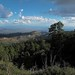 Sky Island Views