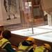 Kelvingrove Museum D 593