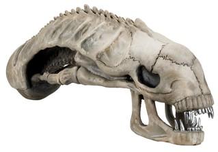塵歸塵土歸土終究一堆白骨?!NECA【異形頭蓋骨】Xenomorph Skull 1:1 完全復刻 異形迷必備化石收藏!!