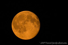 Orange Moon Over Duluth