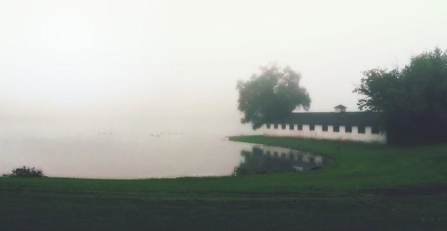 Fog on the Tennessee (Explored)
