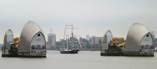 Young Endeavour (3) @ Thames Barrier 15-07-15