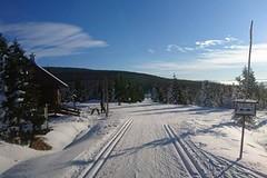 Kam za sněhem na Vánoce?