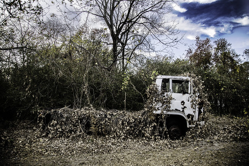 Vine Covered Truck