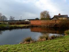 GOC Watton-at-Stone to Stapleford 027: Pond at Southend Farm, Sacombe