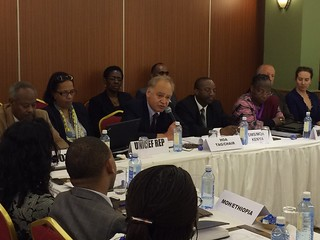 Dr. Jean-Marc Olive, Horn of Africa (HOA) Polio Technical Advisory Group (TAG) Chair, chairs proceedings of the HOA Polio Outbreak Final Assessment