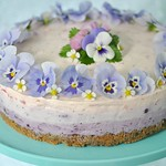 Gluten free blueberry & raspberry cheesecake 5