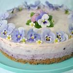 Gluten free blueberry & raspberry cheesecake 5