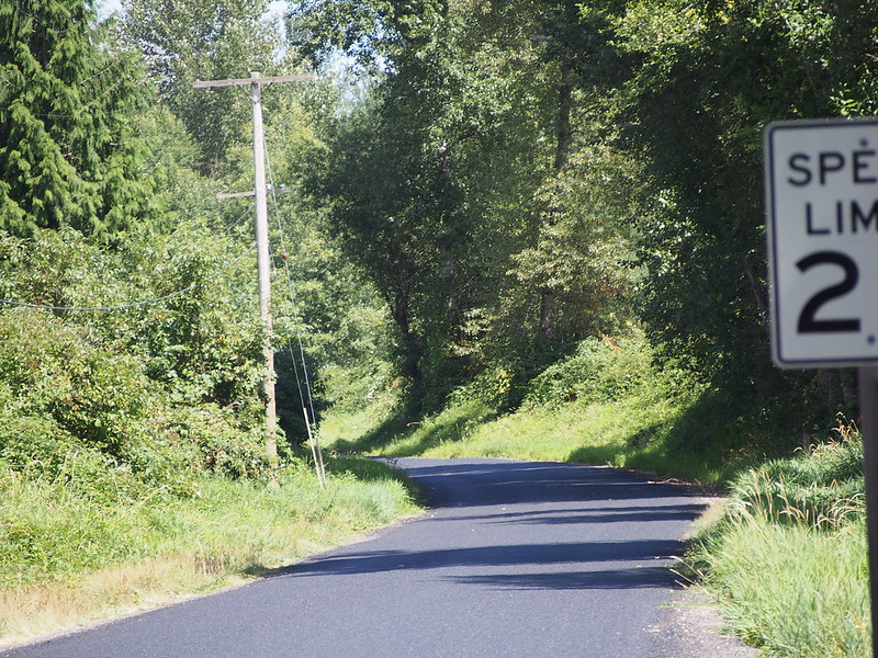 Carbon River–South Prairie Road SE