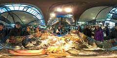 At the Fish Shop 360°