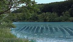 Megoldható az, hogy kollektor csöveket tóba süllyesszenek!
