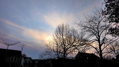 Frío en el cielo,  en la tierra