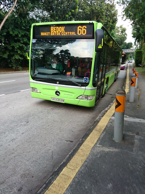 This morning I finally took my first ride on a green bus which is the colour I voted for. DSC_3320