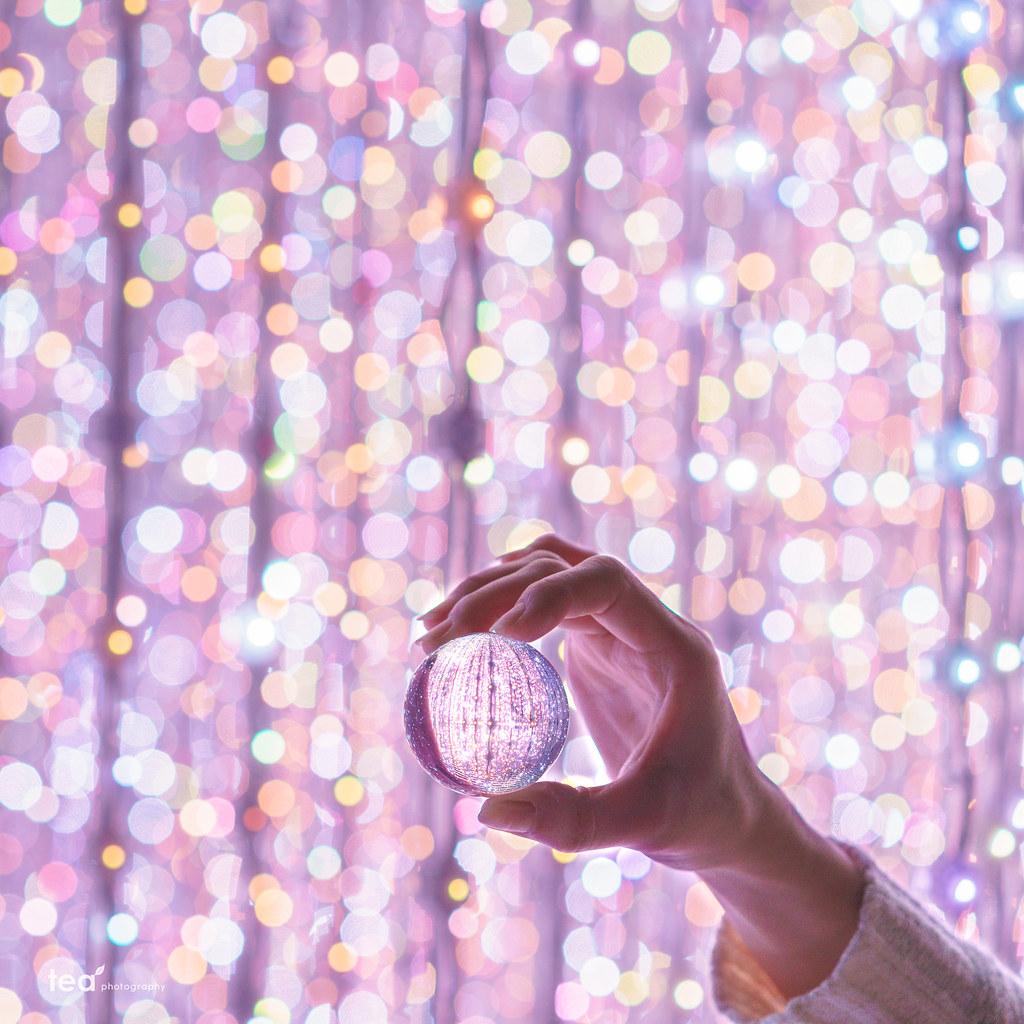 光とガラスの世界 | Sony α7Rii + Sonnar T* FE 55mm F1.8 ZA