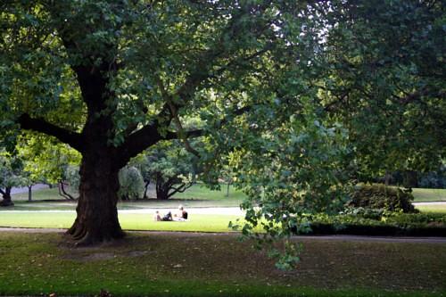 Hagley Park (Christchurch)