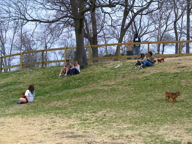 Centennial Park Dog Park Thunder Bay