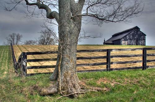 county tree barn fence landscape kentucky hdr fayette photomatix jackscreekpike