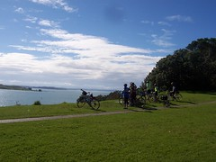 Go Biking in Auckland - Things to do in Auckland